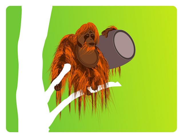 Oranga beer, de Chris Murtagh