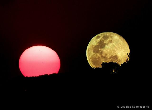 Sun & Moon, de Douglas Scortegagna